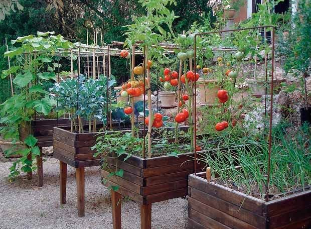 Las 25 mejores ideas sobre jardiner a de hortalizas en for Jardines en macetas