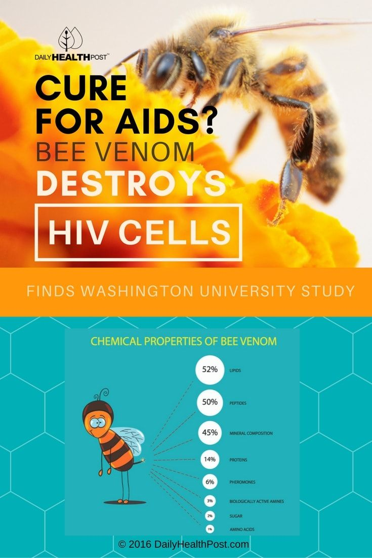 Cure for AIDS? Bee Venom Destroys HIV Cells, Finds Washington University Study via @dailyhealthpost