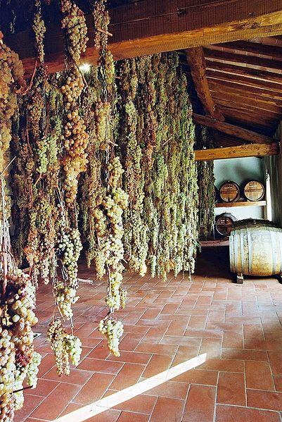 Malvasia and Trebbiano grapes undergoing the drying process to produce Vin Santo