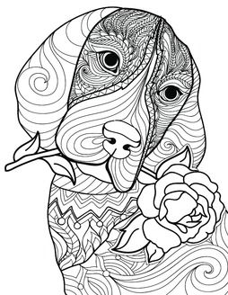 2809 best images about coloring pages on pinterest