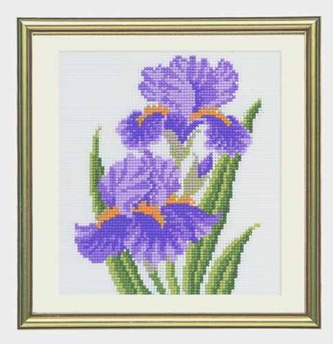 CS 718 iridi Cross Stitch Starter Kit di ColeshillCollection