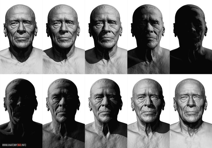 CG scanned head lighting reference  http://www.anatomy360.info/anatomy-scan-reference-dump/
