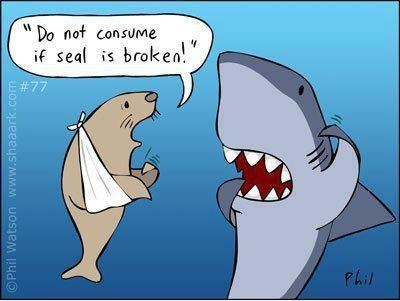 Warning:  Do not consume if SEAL is broken.: Seals, Funny Pics, Jokes, Funny Pictures, Humor, Funny Animal, So Funny, Sharks Week, Sharkweek