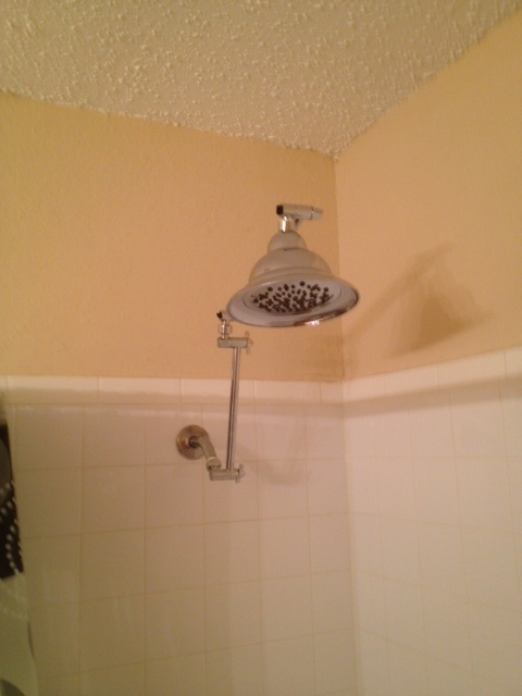 A must for tall people that take showers....A shower head extension.