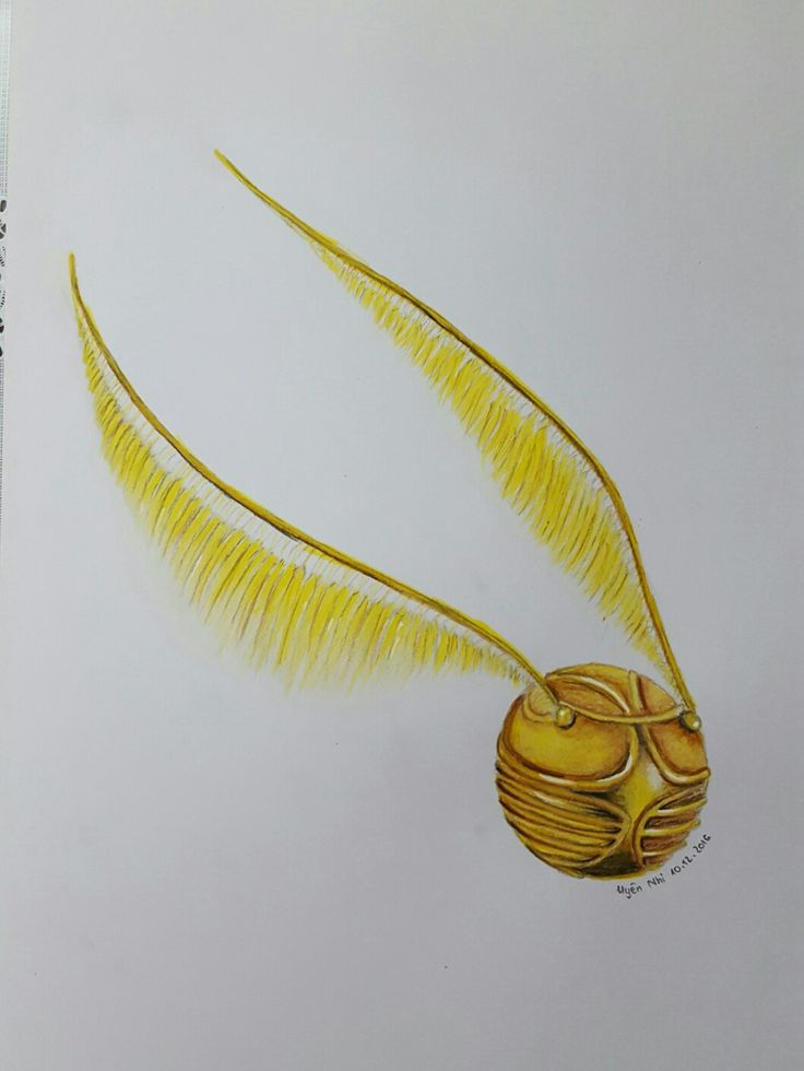 This is my drawing of The Golden Snitch