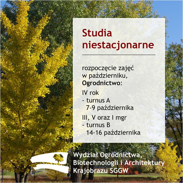 Studia niestacjonarne rozpoczęcie zajęć wpaździerniku, Ogrodnictwo: IV rok - turnus A   7-9 października III, V i I mgr - turnus B  14-16 października #wobiak #sggw
