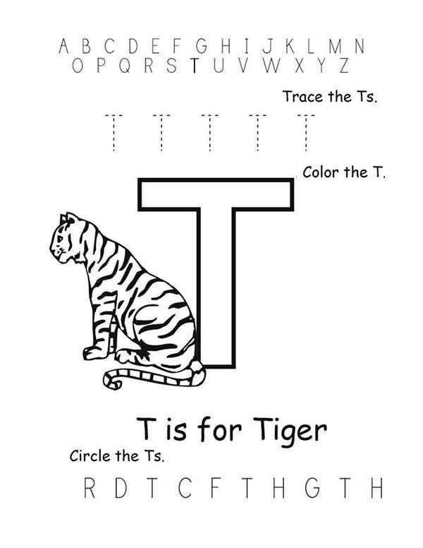 Letter T Letter T Is Fo Tiger Coloring Page Letter T Lettering
