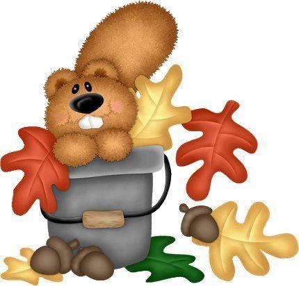 Autumn beaver in a  bucket