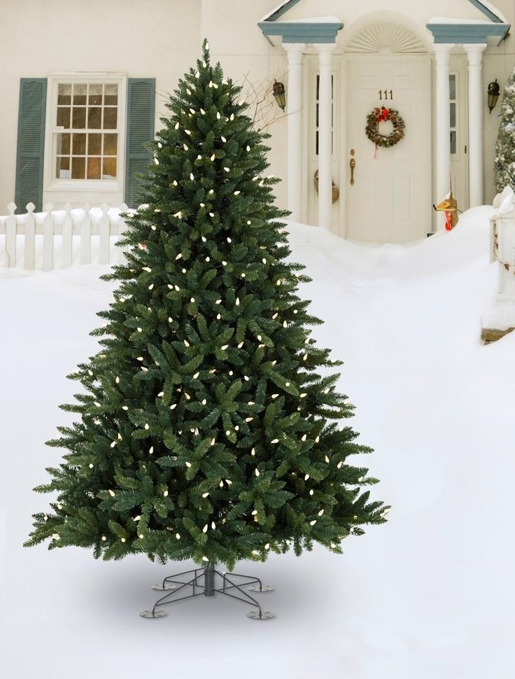 Best 25+ Outdoor christmas trees ideas on Pinterest | Outdoor ...