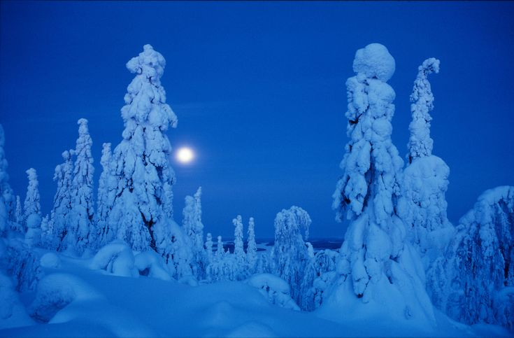 The Polar Night Counter shows how long kaamos, the season with no sunrise, lasts in northern Finland. It also shows how long is left before the winter solstice.