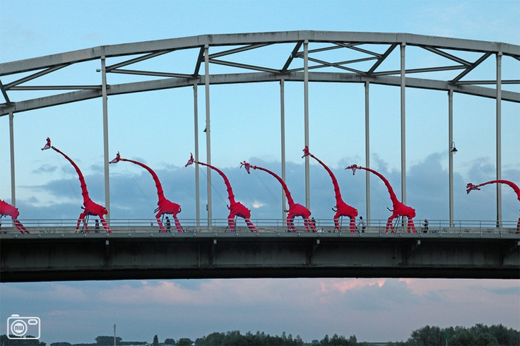 Giraffes on the Wilhelminabridge. Deventer on stilts festival 2012.