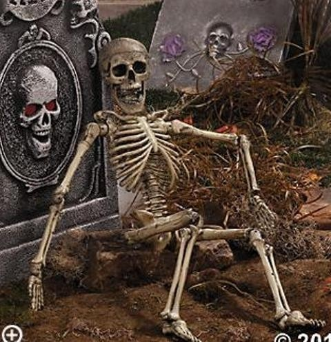 large posable skeleton halloween prop party decoration new ebay - Ebay Halloween Decorations