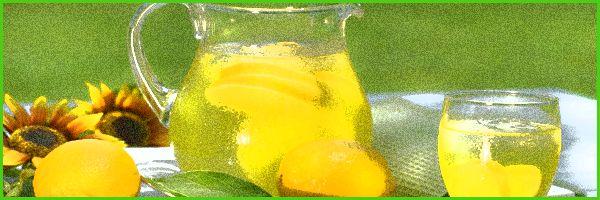dieta-del-limon #dietas http://www.adelgazarysalud.com/dietas/dietas-varias/dieta-limon-desintoxicacion