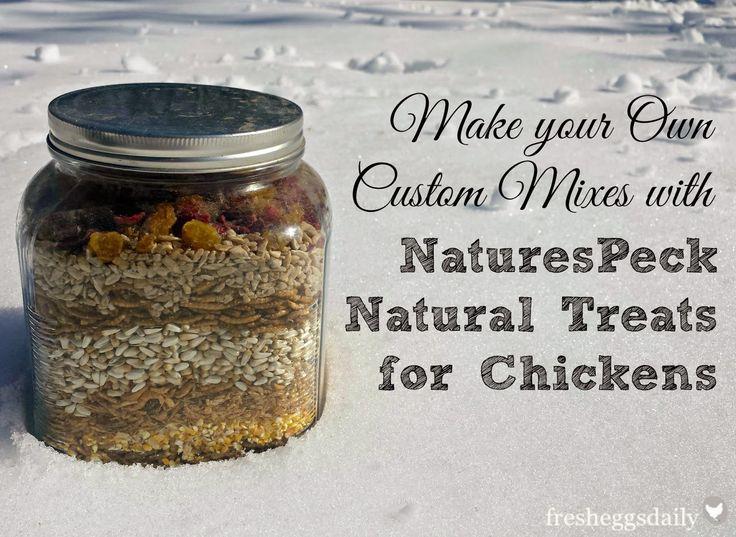 Mix Custom Chicken Treat Blends with NaturesPeck