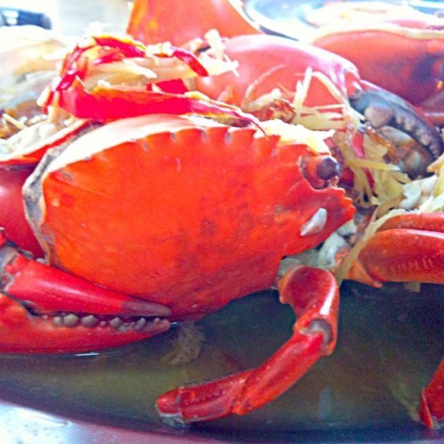 レシピとお料理がひらめくSnapDish - 7件のもぐもぐ - Steam crab by Jorge Bernal Márquez