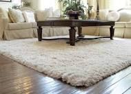living room rug - Google Search