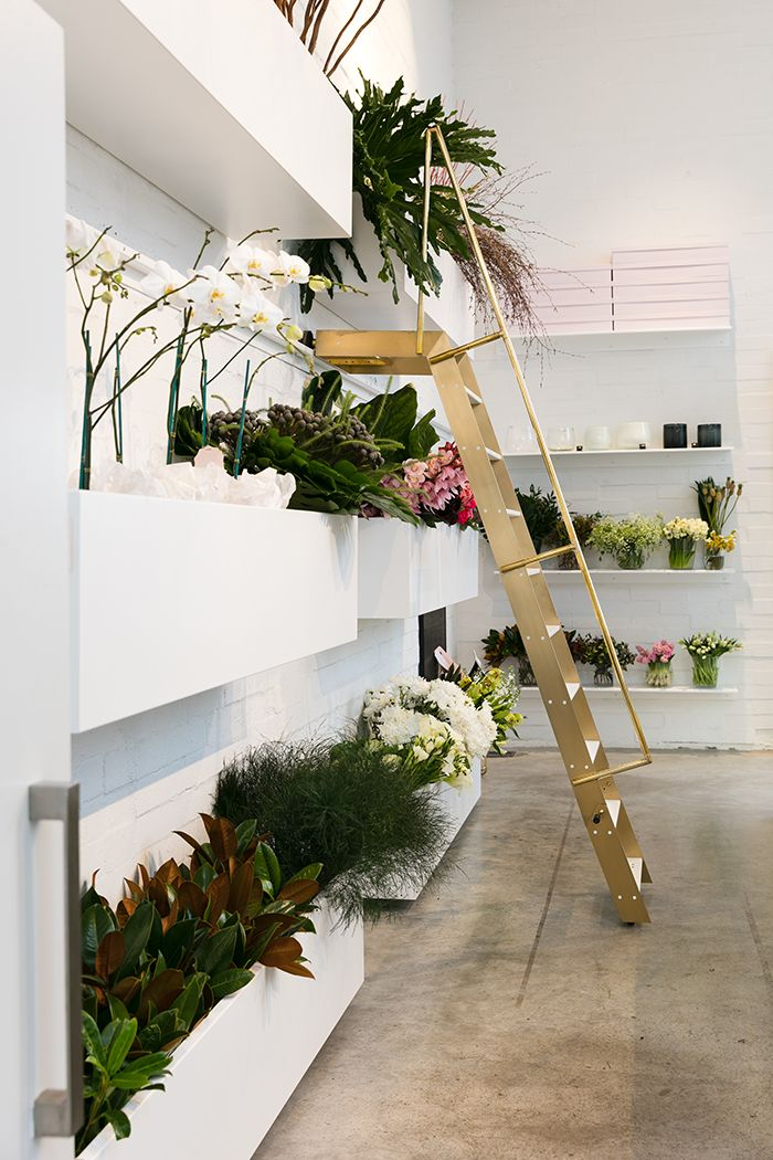 Top 25 Best Flower Shop Interiors Ideas On Pinterest