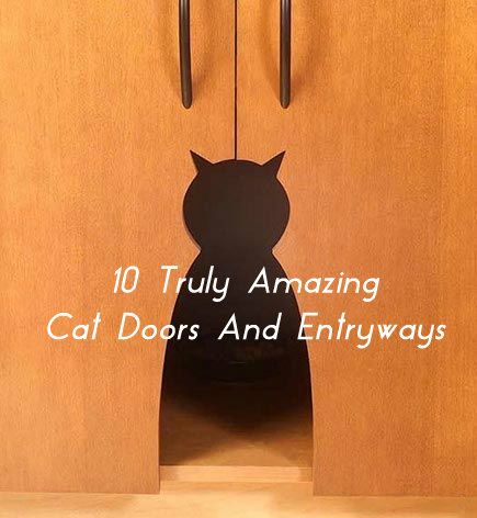 Need ideas on a better cat door? There's some great ideas here ...see more at PetsLady.com ... The FUN site for Animal Lovers