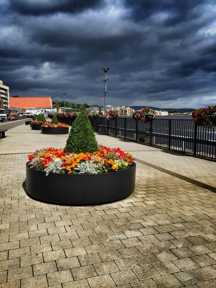 Flower bed in Derry