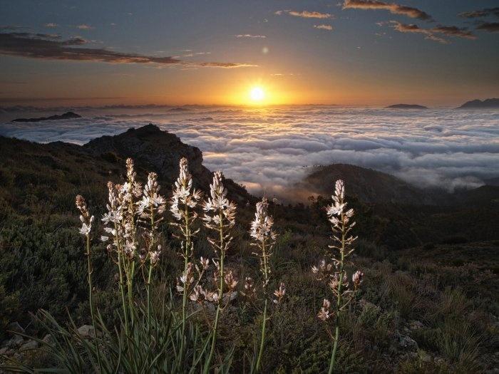 Increíble amanecer sobre las nubes