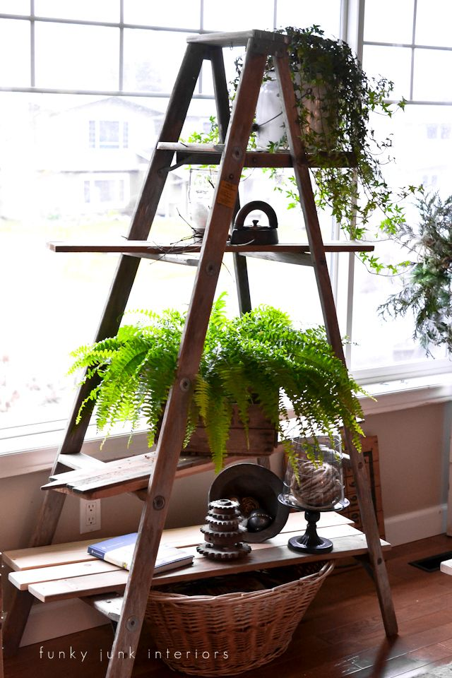 Clean, winter decorating with a ladder plant stand, via FunkyJunkInteriors.net Plus other memories from the past.
