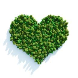 Eco-friendly ideas for #ValentinesDay
