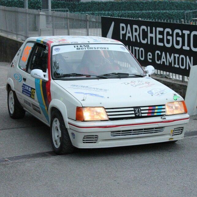 Peugeot 206 GTI @rallydicomo