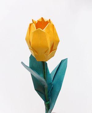 Origami Tulip Origami Flower Origa