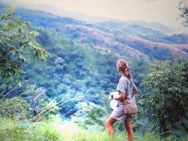The heartbreaking reason Jane Goodall stopped doing what she loved most