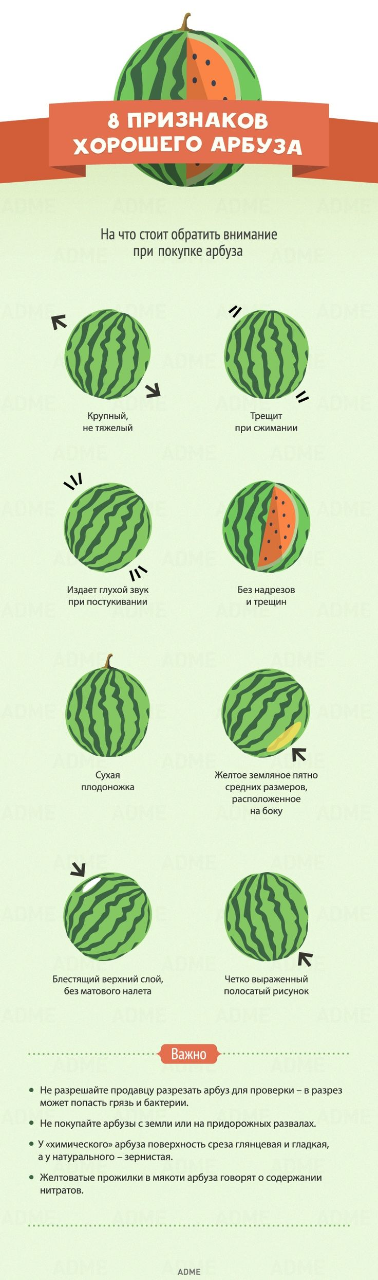 8признаков хорошего арбуза