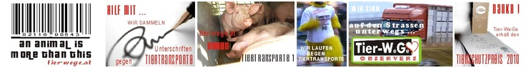 tier-wege #tierrechte unterschriften-sammlung gegen tiertransporte