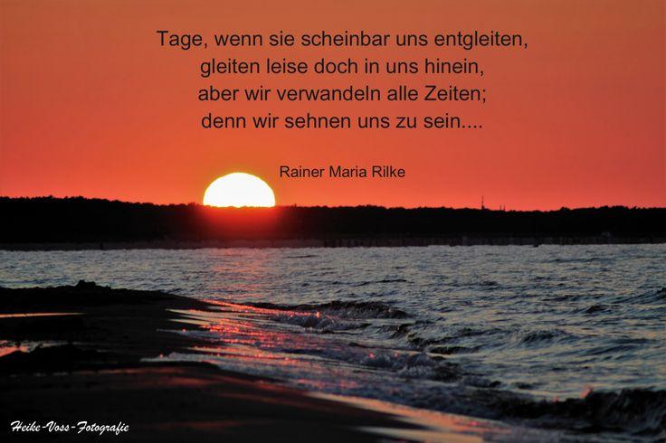 Rilke- Zitat