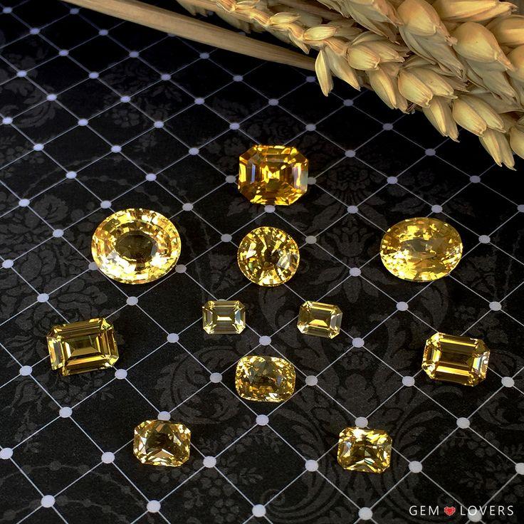 Знаете ли Вы, что на втором месте по популярности послесиних сапфировнаходятся желтые? Свойства жёлтого сапфира таковы, что он может быть внешне очень похож на более дорогой жёлтый бриллиант. Дополнительное сходство между ними достигается применением особых видов огранок, которыми обычно гранят бриллианты. Желтые экземпляры корунда иногда называют золотыми сапфирами или солнечными, и не зря, ведь хорошо огранённый образец имеет очень пронзительные и искрящиеся вспышки. Оттенки камня могут…