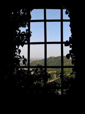 View of Torriana from Castle Montebello -by @jeanettekramer.