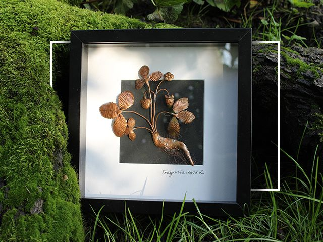 Druid's Forge » Wild strawberry picture