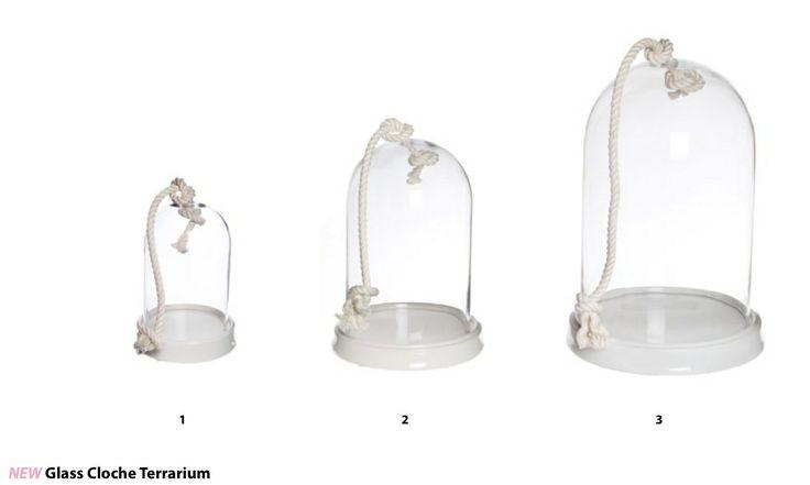 White Cloche Bell Terrarium Collection