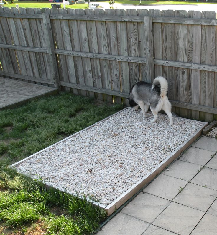 Outdoor Potty Rock Area For The Dogs Has Underground