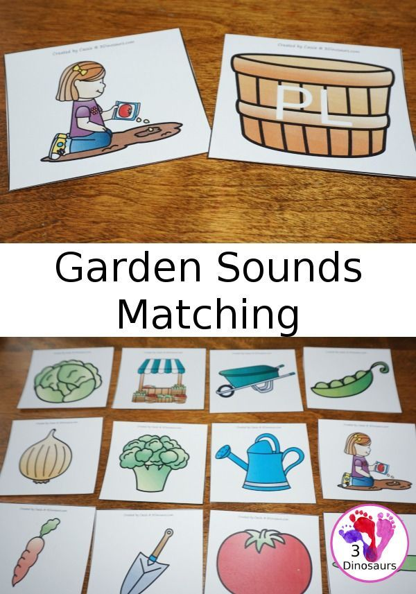 Free Garden Themed Beginning Sounds Matching - blends, digraph and single letters sounds - 3Dinosaurs.com
