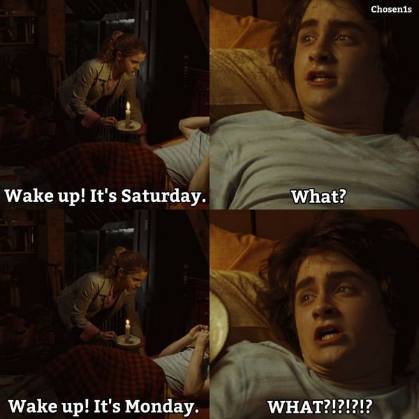 Harry Potter Harry Potter Memes Hilarious Harry Potter Memes Harry Potter Funny