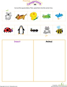 Cut and Categorize Insect vs. Animal
