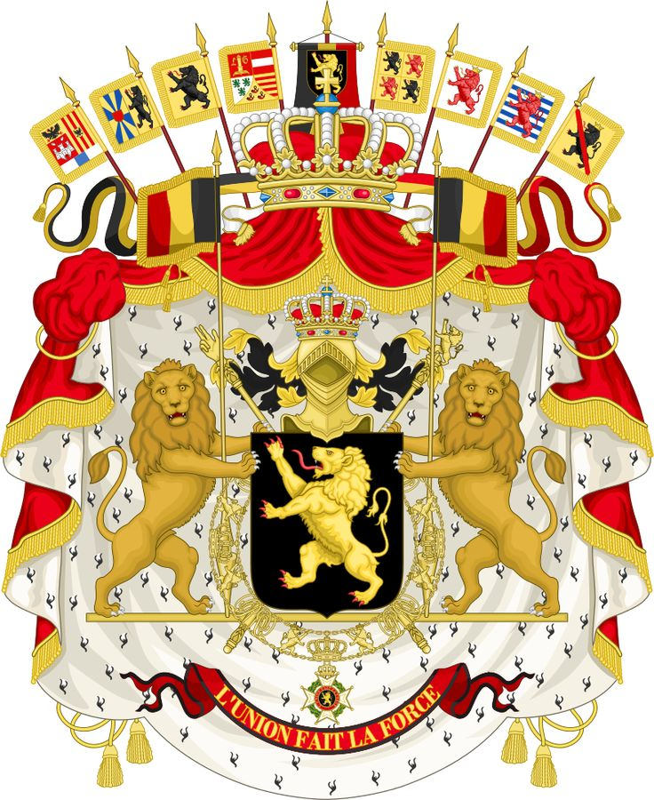 This is the Great coat of arms of Belgium. The word Belgium comes all the way back from the Romans.