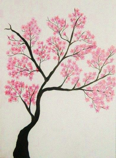 Cherry Tree Tree Drawings And Drawings On Pinterest