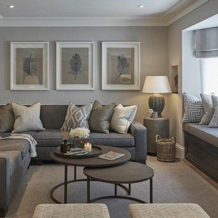 couleur-peinture-salon-grise-decor-en-gris-et-marron-idee-tres-esthetique