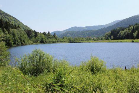 Le lac de Sewen est visible depuis la route mais on a tout intérêt à prendre un sentier pour en longer un bout et goûter au calme des sous-bois.