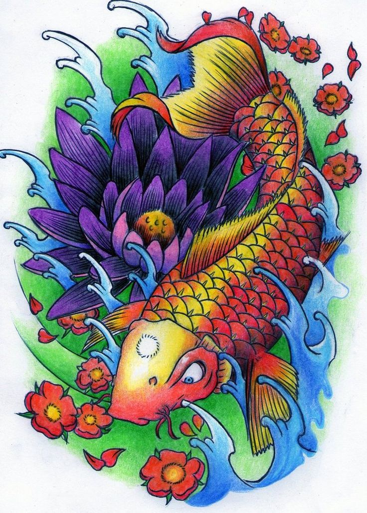 Koi fish tattoo drawing color images for What color are fish