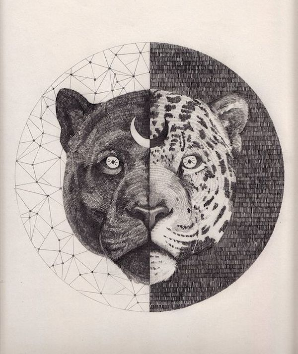 Black Jaguar Medicine: What is My Spirit Animal?   In My Sacred Space