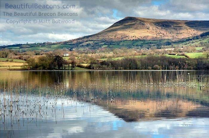 Mynydd Troed from Llangors Lake