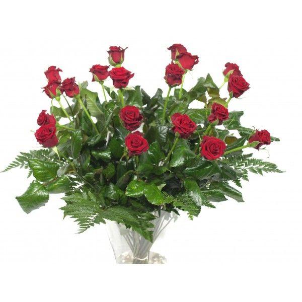 Bos rode rozen bestellen? Als de roos nog in de knop is staat dit voor puur en liefdevol, een roos in bloei staat symbool voor een liefde die in volle bloei is. Wie geeft u dit mooie symbool?