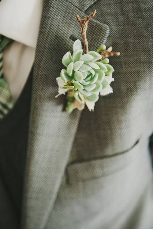 Succulent Boutonnieres  - amazingly different!