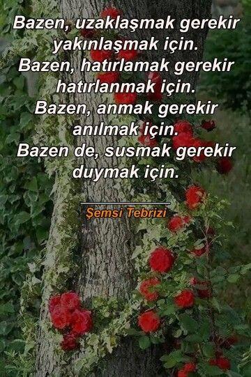 Şemsi Tebrizi